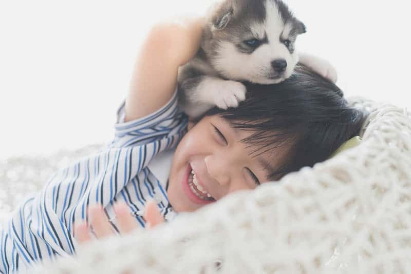 happy little boy playing with cute dog