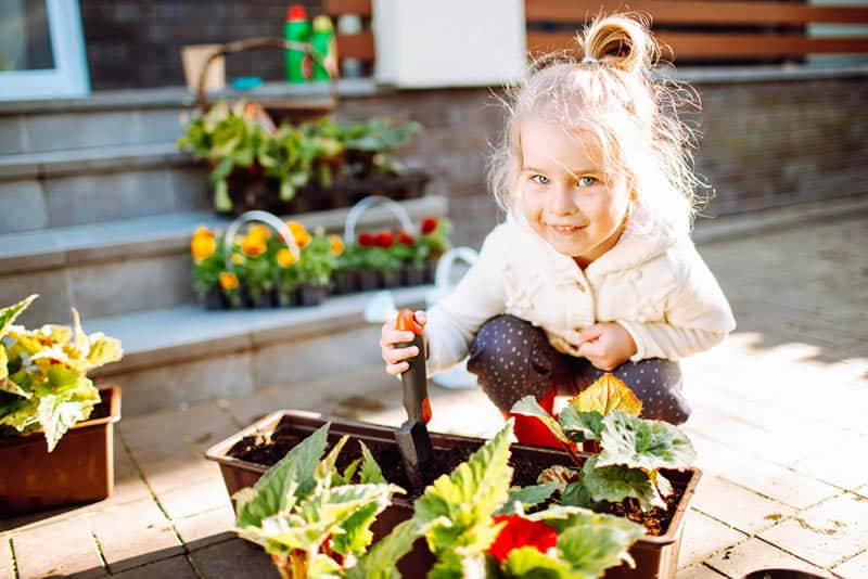 little blonde smiling girl with pot flowers of begonia at her back yard