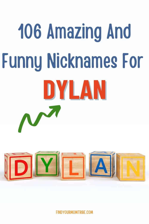 Pinterest nicknames for dylan