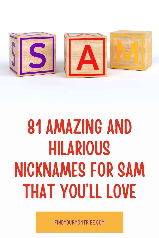 Pinterest nicknames for sam
