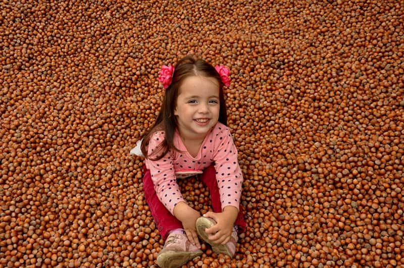 sweet little girl sitting on bunch of hazelnuts and smiling