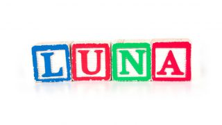 Toy blocks spelling out the name Luna