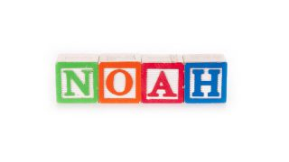 Toy blocks spelling out the name noah