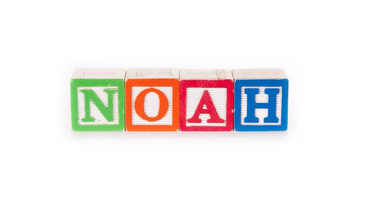145 Classic And Unique Middle Names For Noah