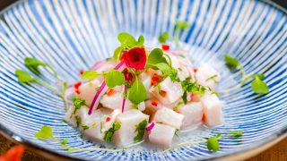 ceviche served in a colorful blue plate