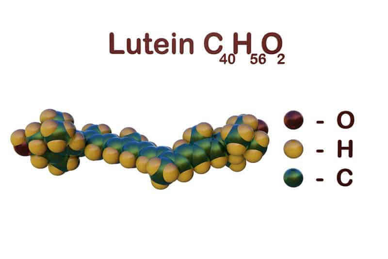 Structural chemical formula and space-filling molecular model of lutein