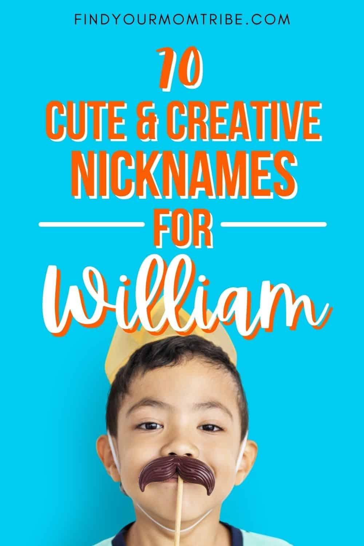 pinterest nicknames for william