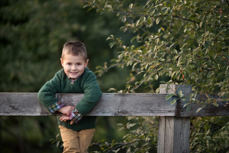Child in the park climbed a wooden fence