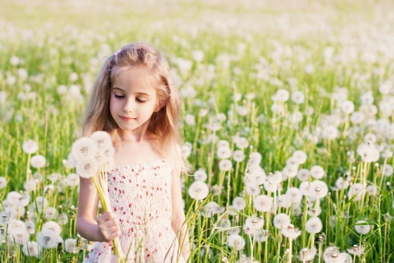 little girl holding dandelion
