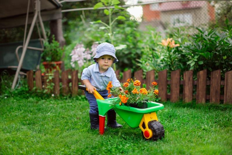 Little boy playing in garden