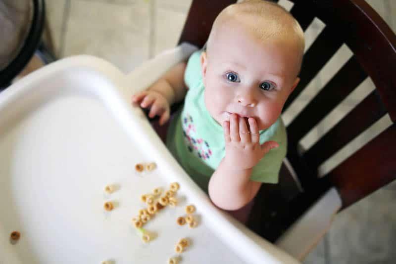 cute baby eating cheerios in high chair