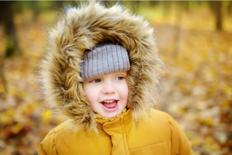 Little boy during stroll in the forest at cold sunny autumn day