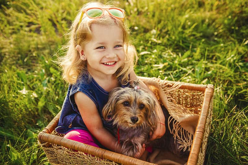 smiling little girl sitting in a basket with her dog