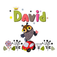 a colorful illustration of the name David with a cartoon owl
