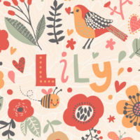 colorful illustration of the name Lily