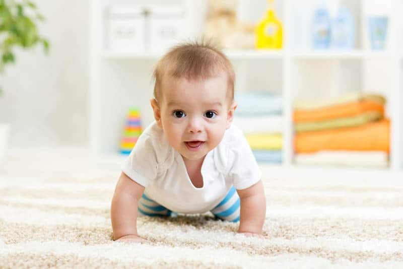 adorable baby boy crawling on the floor